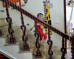 Lưới an toàn dành cho trường mầm non